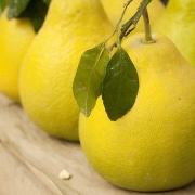 Pomelo: immunerősítő vitaminbomba télre