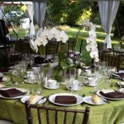 """""""Zöld"""" esküvő színes orchideákkal"""