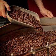 Honnan származnak a legjobb kávék?