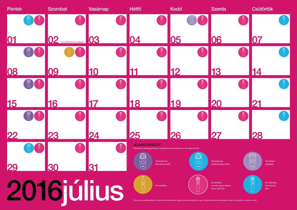 Braun Aphrodite 30 Day Plan Calendar HU julius