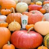 Pumpkin Spice Latte lifestyle (1)