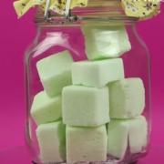 Így készíthetsz saját kezűleg WC tisztító tablettát! - Lépésről lépésre!