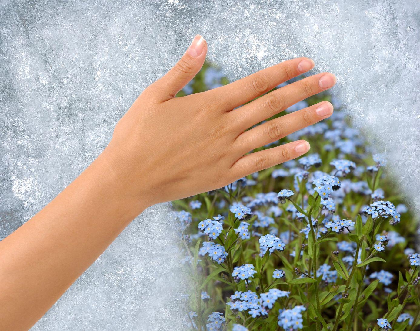 illatokkal a tavaszi faradtsag ellen (4)