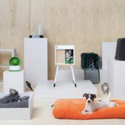 Magyarországon is elérhető az IKEA kutyáknak és macskáknak tervezett kollekciója