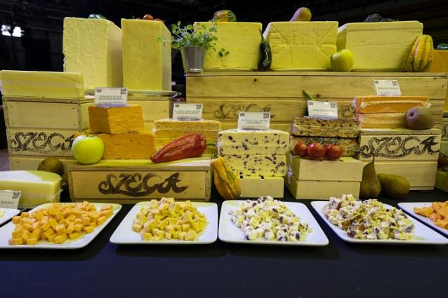 A vászolyi Balaton sajt nyert belépőt a sajtok Bocuse d'Or-jára