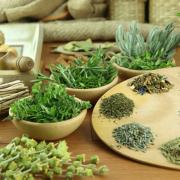 Csodatévő illatos növények álmatlanság ellen