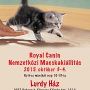 Nemzetközi Macskakiállítás 2015. október 3 - 4. Budapest Lurdy Ház
